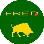 immagine di FRED MULTI-SERVICES